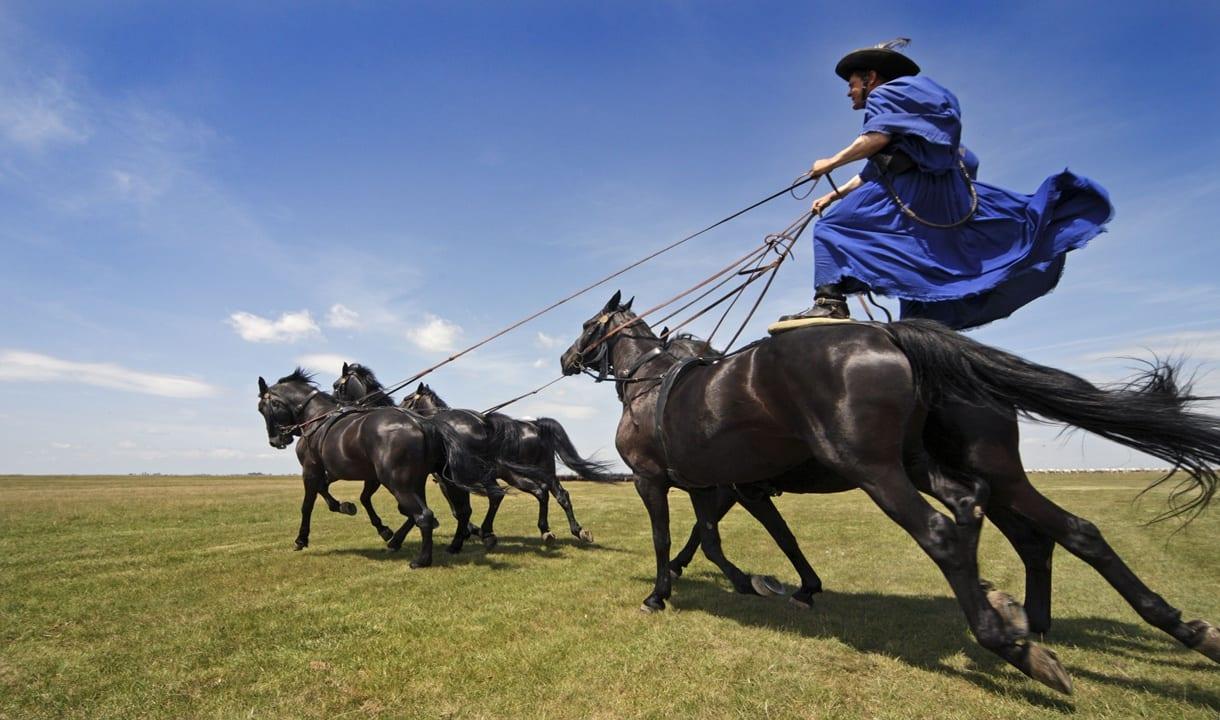 Gardien de chevaux de la Puszta